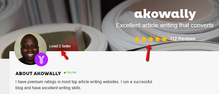 article writer in Fiverr