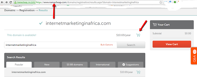 register a domain name in Africa